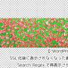 【WordPress】SSL化後に表示されなくなった画像をSearch Regexで再表示させよう
